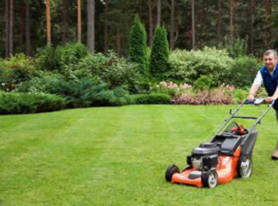 Full garden maintenance for rental properties